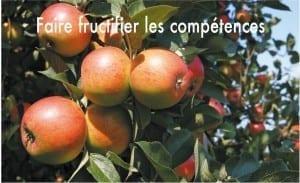 poster pommes FAIRE FRUCTIFIER SES COMPETENCES (2)