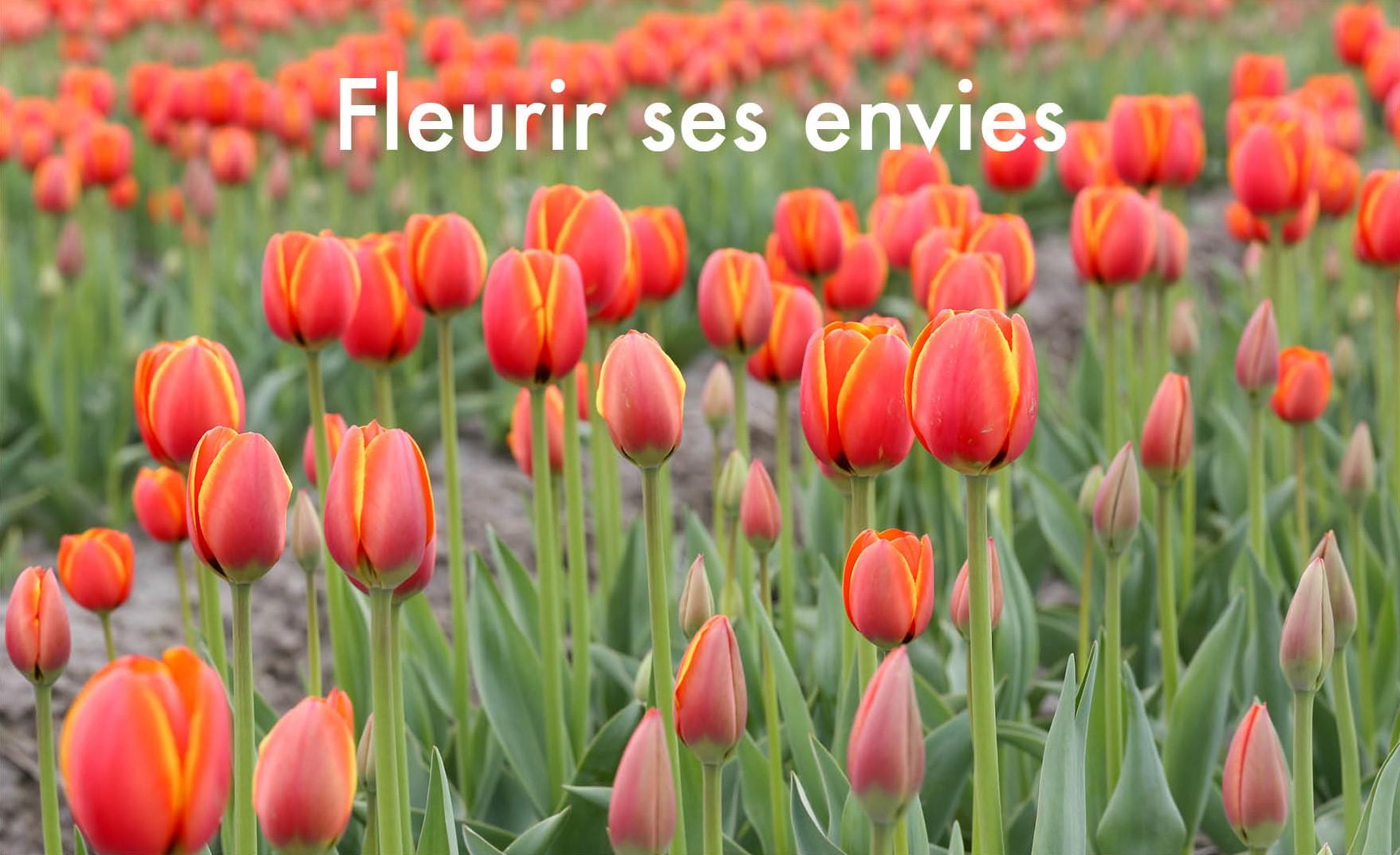 poster-tulipes-fleurir-ses-envies-2